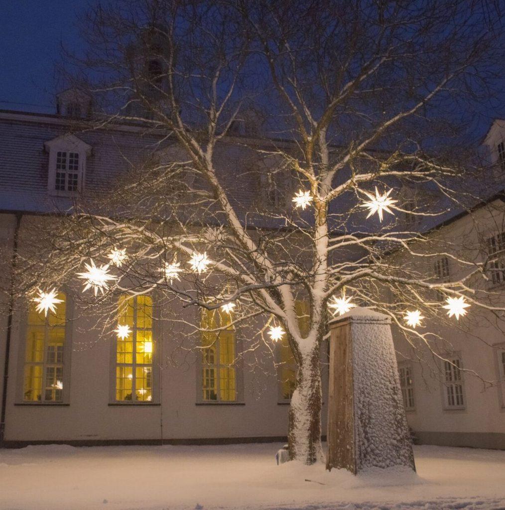 Baum mit Sternenbeleuchtung