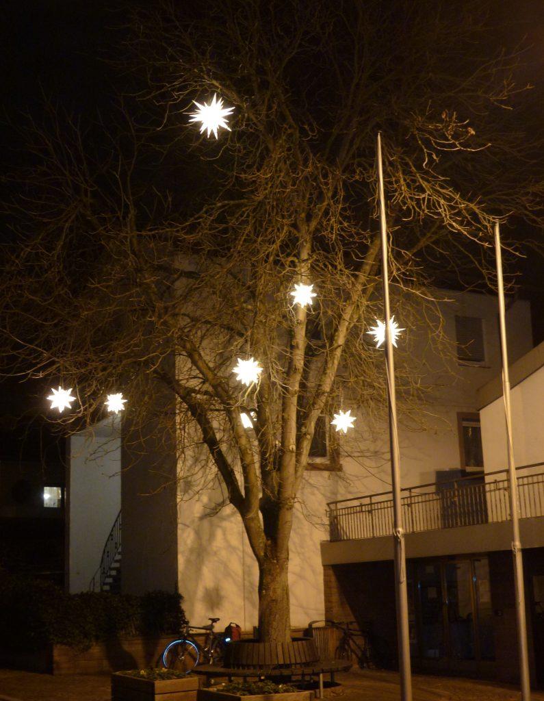 beleuchteter Baum beim Rathaus